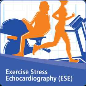 Exercise Stress Echocardiography